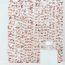 Photo Booth Backdrop Rose Gold